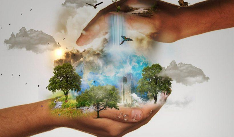 radioamiga , free, radio, online , medio ambiente